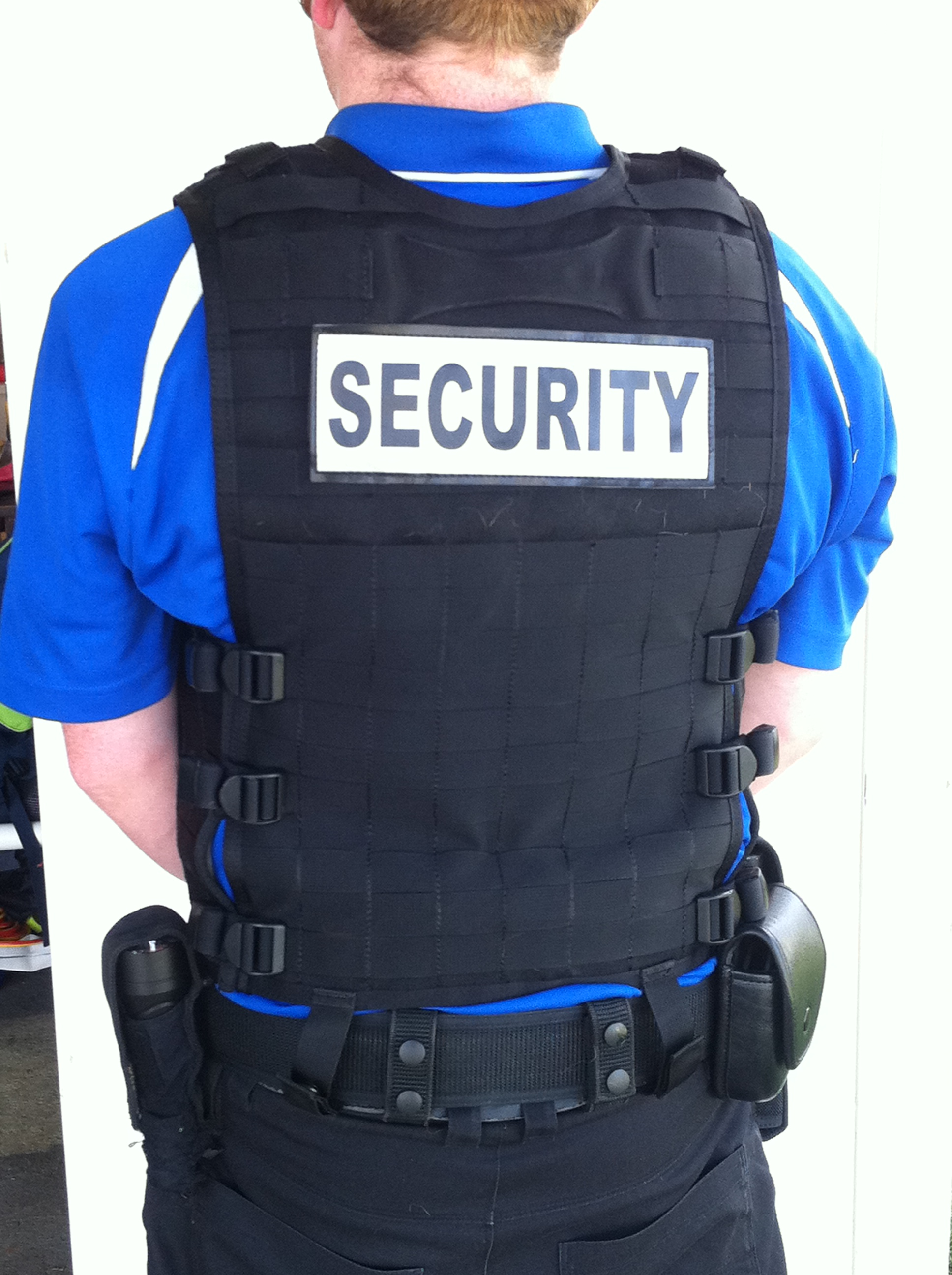Security Officer Professionalism - Do You Have What It Takes?